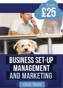 Business Set-up and Management Courses from £25
